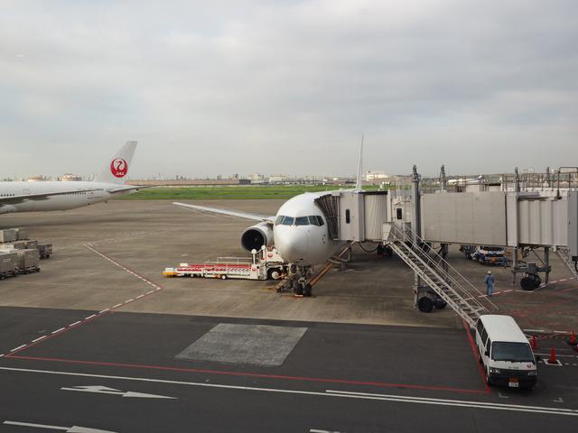 5日朝 羽田空港