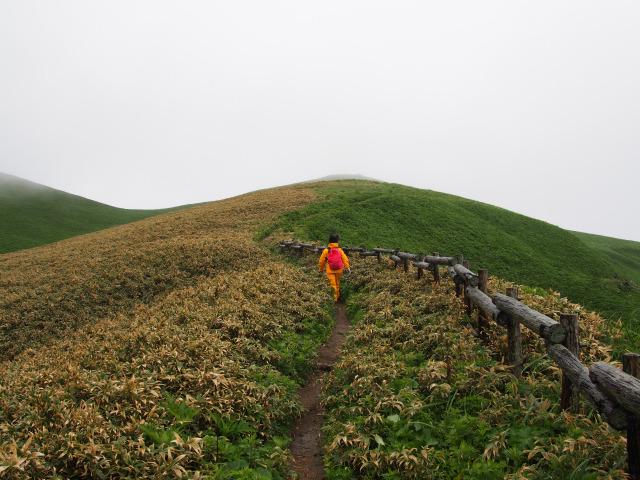 ゴロタ山の登り