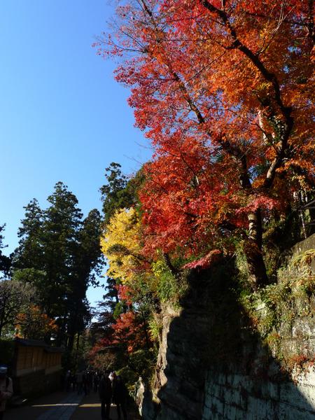 円覚寺(4)