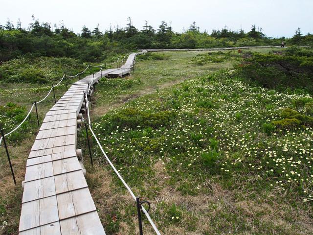 御田の神湿原(2)