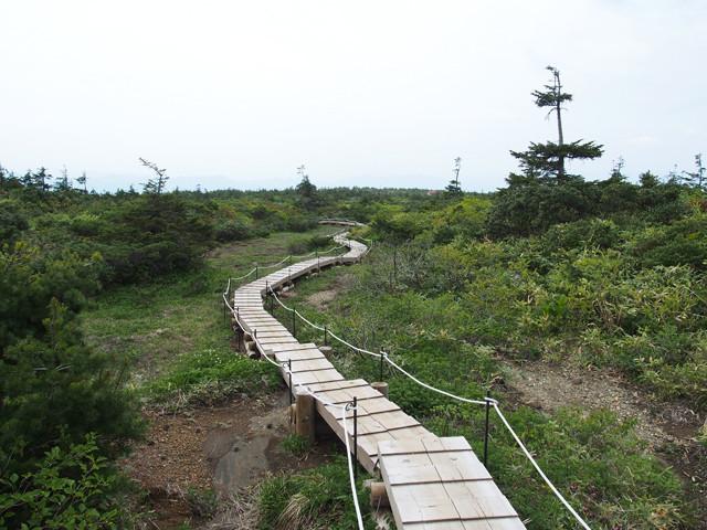 御田の神湿原(1)
