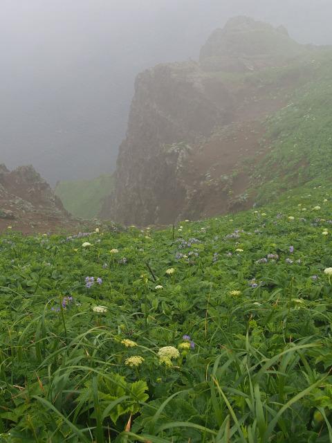 ゴロタ岬から(2)