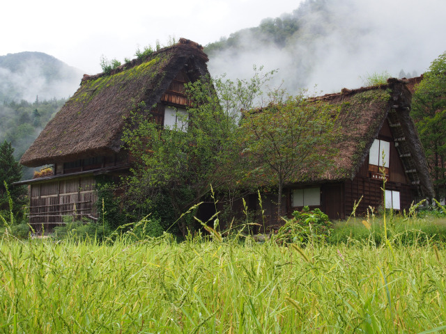 白川郷(5)