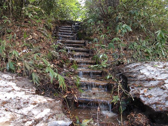川の様な登山道