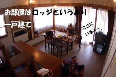 20070405172635.jpg