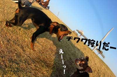 20070401230140.jpg