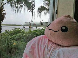 雨を見つめるポリン