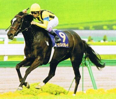 ●こんなん楽勝だろと思った馬が惨敗したレース