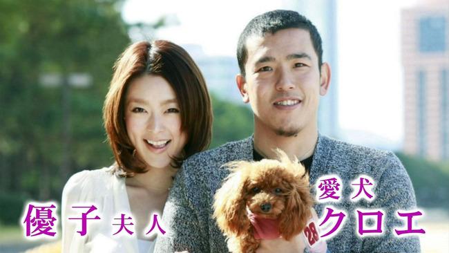 大隣の嫁と犬