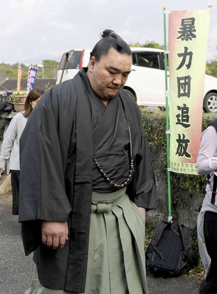 「日馬富士無料写真」の画像検索結果
