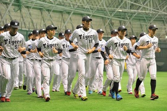 阪神の今季一軍出場無し選手一覧がこちら
