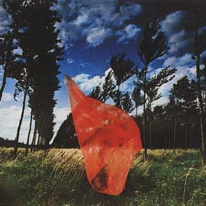 red-veil-in-wind1