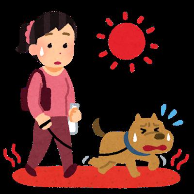 夏の道路の上を散歩させられている犬のイラスト
