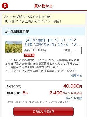 楽天ふるさと納税_2017 - s