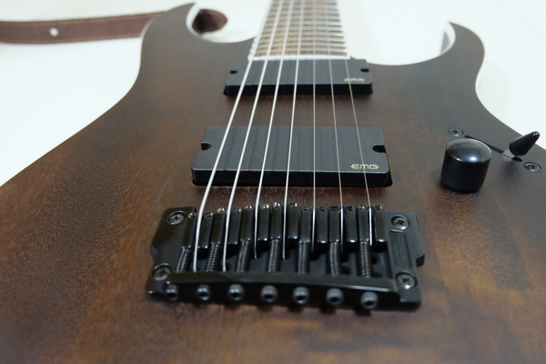 Ibanez - RGIR27BFE (Iron Label RG Series) (1)