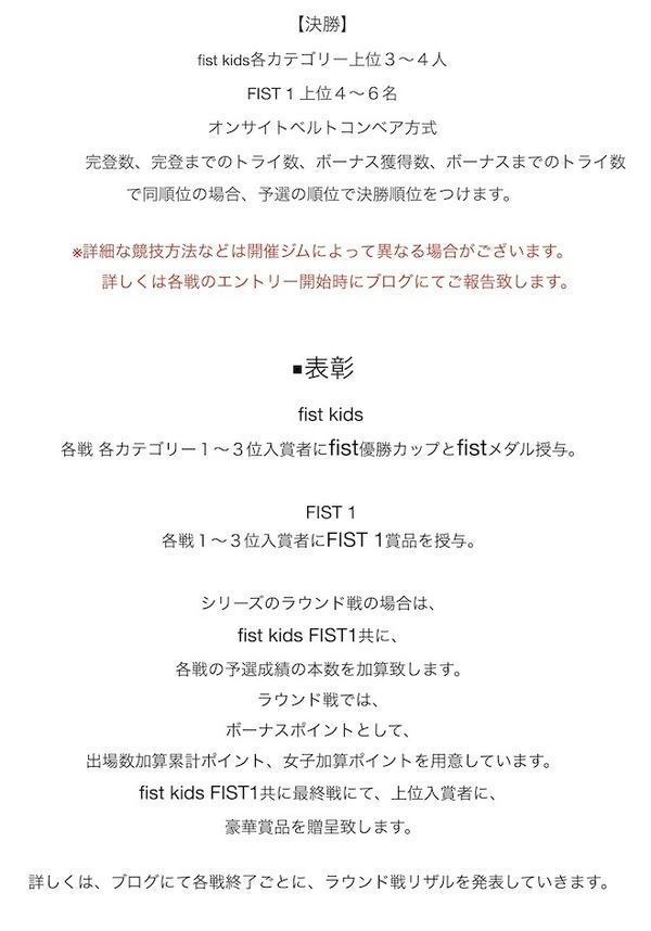 fist-FIST−4 1要項