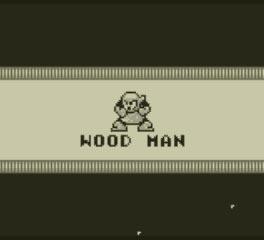 3DS_ロックマンワールド2_06