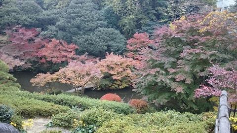 池田山公園FB_IMG_1480214512001