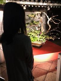 六角堂・生け花