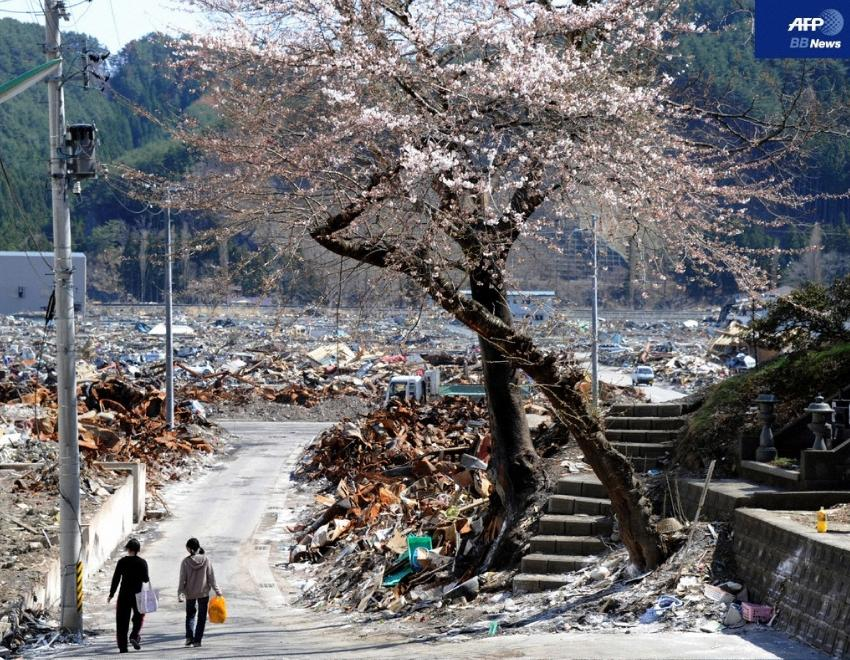 東日本大震災を振り返る11 - 写真・作品 [A... 東日本大震災 潮出版社 格安: 玉城電険