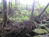 水源涵養保安林2