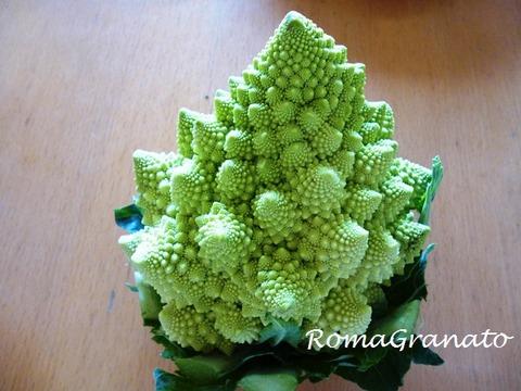 g broccoli