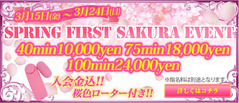 Spring-first-SAKURA-event