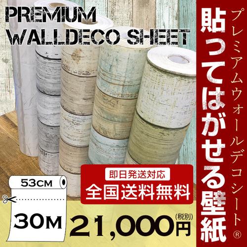 premium-06-s-01-pl