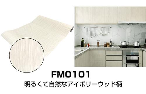 fm0101