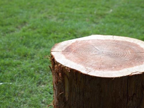 wood-image02