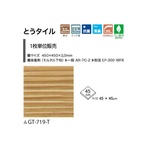 gt719t-s-02-pl