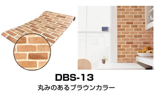 dbs-13