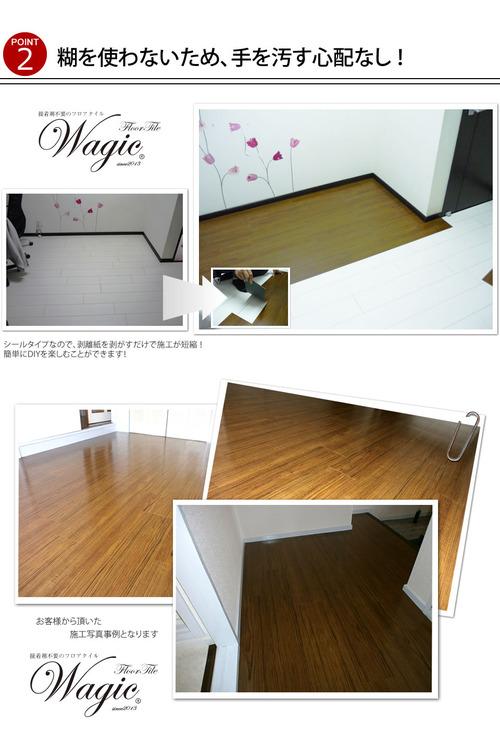 wagicf05 (1)