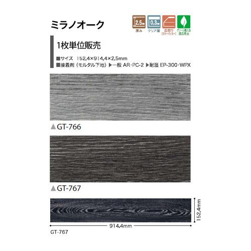 gt766-s-02-pl