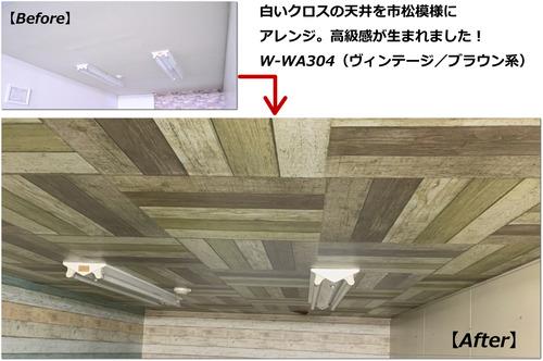 W-WA304_ba