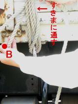 IMG_001611.jpg