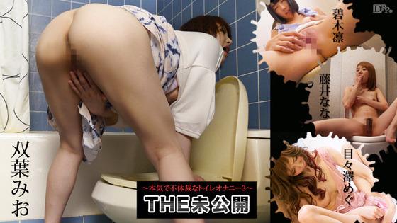THE 未公開 ~本気で不体裁なトイレオナニー3~