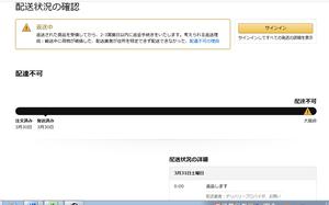 AmazonHenpin1