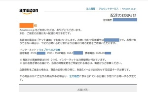 AmazonHenpin3