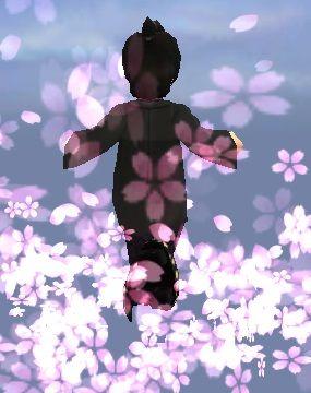 彗星のカケラ(桜)