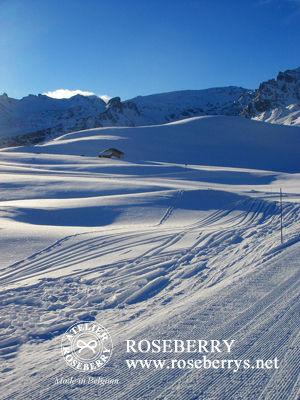 ski149
