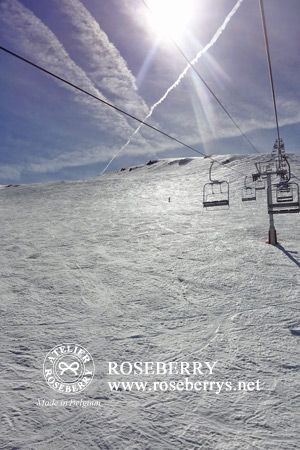 ski30