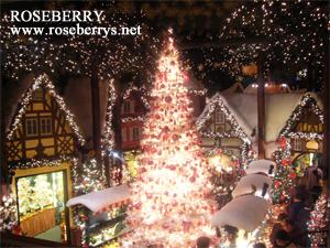 ローテンブルグのクリスマスツリー