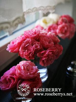 rose29