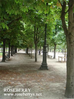 公園も美しい♪