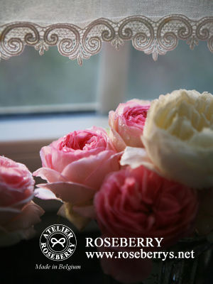 rose35