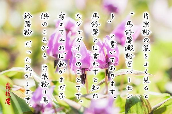 「片栗の花に僅かな春の色」 モヤシそばに水溶き片栗粉