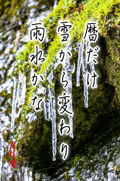 暦だけ雪から変わり雨水かな