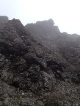 山2013年の 597
