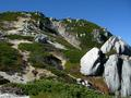 ハイ松と岩峰